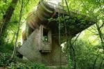 پاورپوینت-الهام-از-سازه-هاي-طبيعي-در-طراحی-معماری
