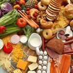 پاورپوینت-(اسلاید)-بررسی-تغذیه