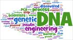 خطرات-زیست-محیطی-مهندسی-ژنتیک