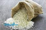 غنی-سازی-برنج-نیم-پخته--با-اسید-فولیک--پذیرش-مصرف-کننده-و-ارزیابی-احساسی