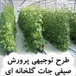طرح-توجیهی-پرورش-صیفی-جات-گلخانه-ای