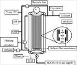 پاورپوینت-بررسی-و-مدلسازی-راكتورهای-hollow-fiber