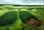 پاورپوینت-زیست-بوم-شناسی-علوم-اجتماعی-اقتصاد-و-مدیریت-محیطی