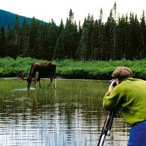 رایگان جزوات درسی اکوتوریسم (رشته مهندسی منابع طبیعی- محیط زیست)