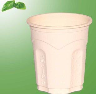 پاورپوینت (اسلاید) طرح توجیهی تولید ظروف یکبار مصرف گیاهی