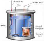 گزارش-کار-آزمایشگاه-فیزیک-پایه؛-ظرفیت-گرمایی-ویژه
