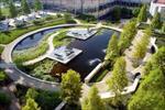 پاورپوینت-(اسلاید)-معماری-منظر