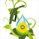 تحقیق-روش-تولید-سوخت-هیدروکربوری-از-جلبک