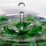 پاورپوینت-(اسلاید)-تصفیه-آب-بوسیله-جلبک-ها-(گیاهان)