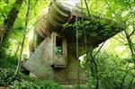 پاورپوینت-رویکرد-طبیعت-گرا-در-معماری