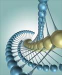 تحقیق-مولكول-نگاري-پليمري-سنتز-و-كاربرد-آن-در-استخراج