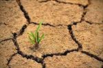 پاورپوینت-حاصلخیزی-خاک