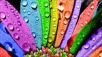 پاورپوینت-رنگ-شناسی-و-روان-شناسی-رنگ-ها