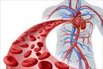 پاورپوینت-دستگاه-گردش-خون