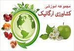 مجموعه-آموزشی-کشاورزی-ارگانیک