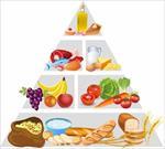 پاورپوینت-تغذیه-و-ارزش-مواد-غذایی