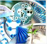 پاورپوینت-کاربرد-باکتری-های-هالوفیل-در-بیوتکنولوژی
