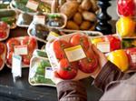 اثرات-بسته-بندی-مواد-غذایی-بر-میکروارگانیسمها-و-آنزیمها